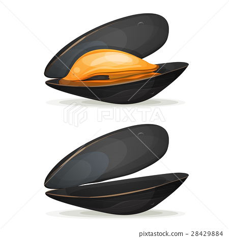 Mussels 28429884