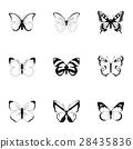 生物 蝴蝶 ICON 28435836