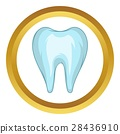 Tooth vector icon 28436910