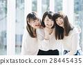 Beauty girls 28445435