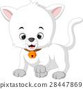 white cat cartoon 28447869
