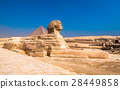 Sphinx and pyramids at Giza, Cairo 28449858