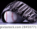 ball baseball glove 28450771