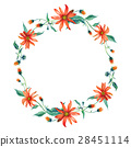Watercolor wreath. Red daisies with leaves 28451114