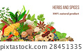 Card Realistic popular culinary herbs and spices 28451335