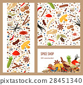 Realistic popular culinary spices. Label cards 28451340