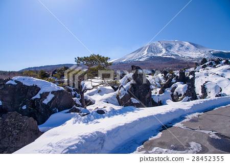 [Gunma] Winter Onioshidashi Garden 28452355