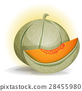 Melon 28455980