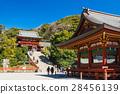 Kamakura Tsurugaoka Hachimangu Shrine和Mai 28456139