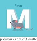 鼠標 老鼠 信件 28456407