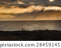 Seascape of Pacific coast at Hawaii 28459145