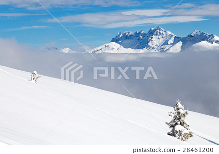 Snow covered landscape with clouds and trees 28461200