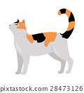 Calico Cat Vector Flat Design Illustration 28473126