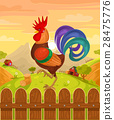 Vector illustration of a rooster 28475776