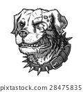 Vector illustration of evil mad dog 28475835