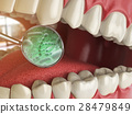 Bacterias and viruses around tooth. Dental hygiene 28479849
