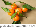 Beautiful mandarin oranges on the wrapping paper 28482121