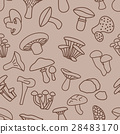 mushroom seamless pattern in brown colour 28483170