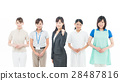 护理 员工 女性 28487816