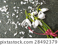 Fresh snowdrops buquet on stone background 28492379