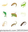 iguana, icon, vector 28505044