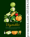 vegetable veggie poster 28508420