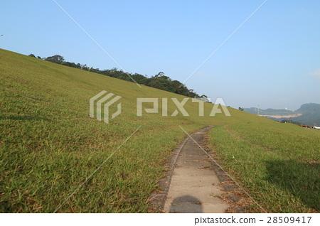 台灣基隆星空草原的山坡草原 28509417