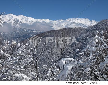 Teruyu Tateyama mountain range 28510966