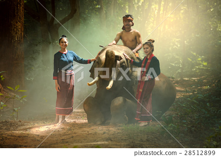 Asian people and elephant 28512899