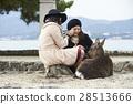 遊覽 旅遊業 觀光 28513666