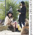 遊覽 旅遊業 觀光 28513673