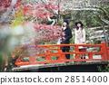 sightseeing, ladies travel, momijiya park 28514000