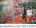 girls trip, ladies travel, momijiya park 28514089