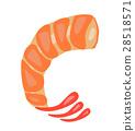 小虾 矢量 矢量图 28518571