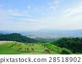 나라 · 와카 쿠사 산의 전망 28518902