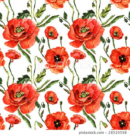 wildflower poppy flower pattern in a watercolor stock illustration