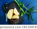 bamboo shoot 28526858