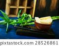bamboo shoot 28526861