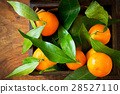 Mandarin oranges with leaves in box 28527110