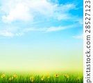 Spring Nature Background With A Green Grass 28527123