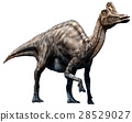 illustration, dinosaur, big 28529027