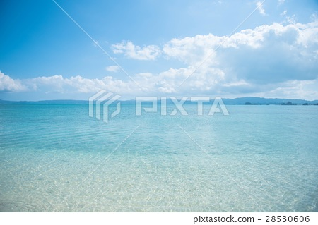 The sea of Okinawa 28530606