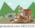 動物 老虎 虎 28531532
