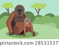 動物 森林 樹林 28531537