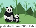 動物 中國 瓷器 28531563