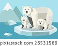 動物 熊 冰 28531569