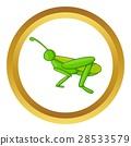 grasshopper, icon, vector 28533579