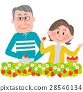 摘草莓 遠足 戶外 28546134