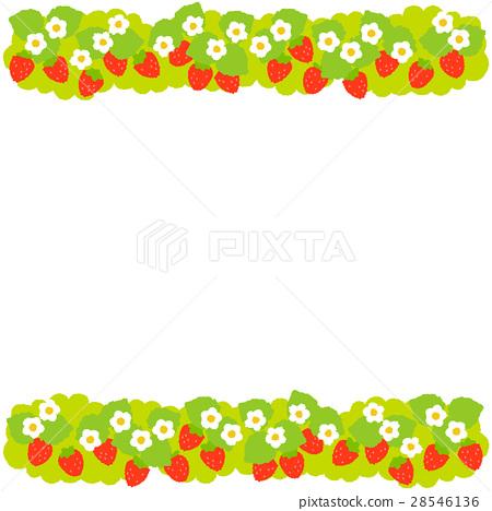 strawberries, strawberry, fruit 28546136