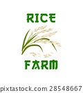Rice plant vector poster or emblem 28548667